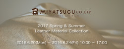 2017 Spring & Summer Leather Material Collection
